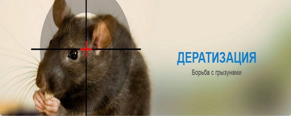 http://snero.ru/files/deratizatsiya_copy.jpg